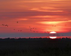 Sunset In Sabine Pass Texas by TN Fairey #sunset #Texas