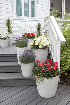 Hipp Hipp Hurra for mai! Vi gir deg tips til hvordan du kan pynte med blomster ute til den store nasjonaldagen. Dream Garden, Garden Art, Home And Garden, Grey Gardens, Outdoor Gardens, Garden Makeover, Backyard, Patio, Decks And Porches