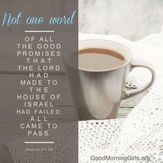 Not one word of all the good promises that the Lord had made to the house of Israel had failed; all came to pass. Joshua 21:45