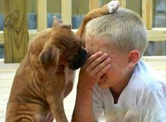 Aww, don't cry, little human.