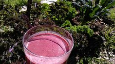 Kale Smoothie Recipes -- lots of great combinations! Made the Mint Blueberry Kale smoothie this weekend and loved it. Strawberry Kale Smoothie, Kale Smoothie Recipes, Kale Recipes, Juice Smoothie, Smoothie Bowl, Healthy Smoothies, Healthy Drinks, Whole Food Recipes, Snack Recipes