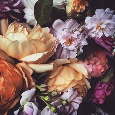"floralls: "" by florastarkey """
