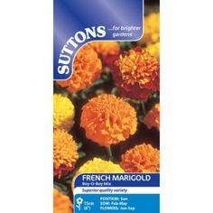 Suttons Marigold French Seeds Boy Mix Suttons Marigold French Seeds Boy Mix. (Barcode EAN=5011567121621) http://www.MightGet.com/april-2017-1/suttons-marigold-french-seeds-boy-mix.asp