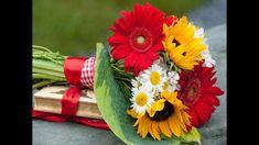 Flores espetaculares lindas e música instrumental Cod. M - 01