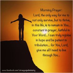 Morning Prayer: Lord, the only way for me to not only survive, but to thrive, in this life, is to remain in You... constant in prayer, faithful in Your Word... I can truly rejoice in hope and be patient in tribulation... for You, Lord, give me all I need to live through You...  #instaquote #quote #seekgod #godsword #godislove #gospel #jesus #jesussaves #teamjesus #LHBK #youthministry #preach #testify #pray #survive #thrive #faith #rejoice #hope #patience #love