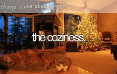 the coziness. ~ things i love about winter