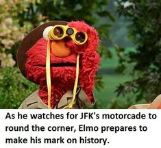 Because Sesame Street Memes Are A Thing (?)