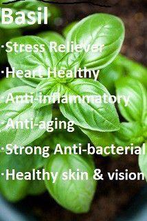 Natural Health Remedies, Natural Cures, Natural Healing, Herbal Remedies, Natural Skin, Natural Medicine, Herbal Medicine, Health And Nutrition, Health Tips