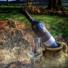 What could be possibly better than a glass of good #Eclisse, #LaRoncaia wine in the nature, after a long day at work?