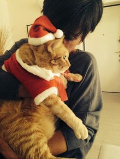 Buon Natale! !! <3
