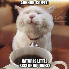 Ahhh coffee ;-D                                                                                                                                                                                 More