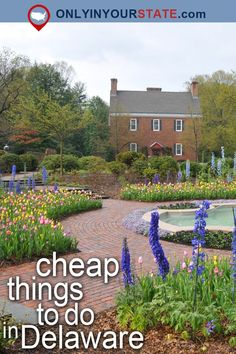 These inexpensive things to do in Delaware are sure to delight your entire family. Cheap Things To Do, Stuff To Do, Fun Things, Wilmington Delaware, Delaware Usa, Delaware Life, Dover Delaware, Best Places To Travel, Places To See