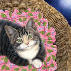I want a photogenic, a calm, a cat who's easily to setting her up to take some pictures on a basket like this♥