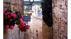 Transfer & tours in Provence