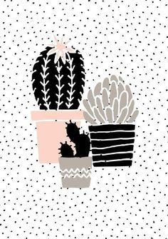 Постер кактусы. Черно-белый постер с растениями. Монохромный постер с какутсами