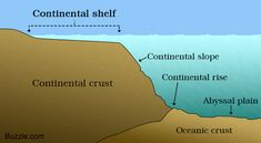 Continental Shelf: A Labeled Diagram and Some Interesting Facts - Science Struck Continental Shelf, Geography For Kids, Oceans Of The World, Marine Biology, Gulf Of Mexico, Earth Science, Projects For Kids, Continents, Geology
