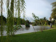 chatuchad park
