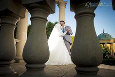 Mutasim & Lina's Wedding #weddingphotos #weddingphotographer #njwedding #njweddingphotographer #nywedding #nyweddingphotographer #palestinianwedding #palestinian #arabwedding #debke #splitwedding #nikon #nikonphotographer #bride #shotbysam #brightlightstudios #blstudios #samehabdallah #dreamwedding