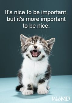 It's nice to be important, but it's more important to be nice. http://on.webmd.com/VwQvVU