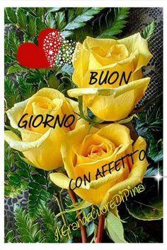 Buongiorno amici ☀️☀️ Auguro a tutti voi.... una felicissima giornata