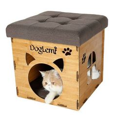 Artesanato em Mdf casa de gato