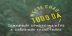 Arte e Cultura - greenMe.com.br