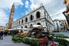 Conoscere Palladio, la Basilica, la Loggia del Capitanio, città d'arte del Veneto, sito UNESCO dal 1994 Vicenza-UNESCO