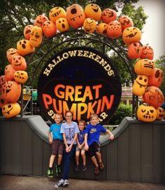11 Best Halloween Images Cedar Point Holidays Halloween Columbus