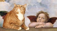 You know what the Mona Lisa and the Sistine Madonna are missing? A poetic, chubby ginger cat sprawled out. A Russian artist has taken hundreds of classic paintings and Photoshoppped. I Love Cats, Crazy Cats, Cool Cats, Fat Cats, Cats And Kittens, Sistine Madonna, Classic Paintings, Red Cat, Tier Fotos