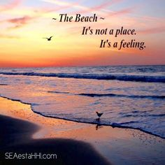 The beach is not a place. It's a feeling.