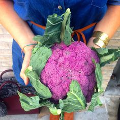Fell in  with this purple #cauliflower from @boroughmarket - this beauty is going to make the best #cauliflowerrice