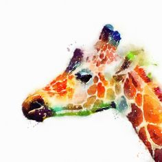 The Graceful - Giraffe Art Print