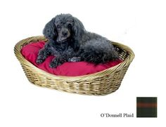 Snoozer Wicker Dog Basket and Bed, Large, Odonnell Plaid « dogsiteworld.com