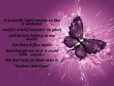 wallpaper downloads | Download Butterflies Butterfly Quotes Infant Loss wallpaper for free ...