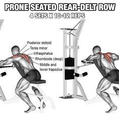 Back Workout But Slightly Different Part 1! Prone Seated Rear-De #BackWorkouts