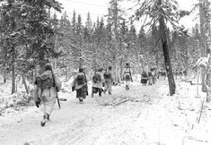 Operation Barbarossa, Interesting Reads, World War Two, Arctic, How To Fall Asleep, Wilderness, Survival, Explore, Finland