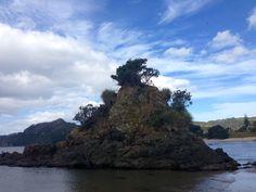 Kuaotunu, Coromandel New Zealand, Places, Water, Holiday, Outdoor, Image, Beautiful, Gripe Water, Outdoors