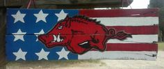 American hog