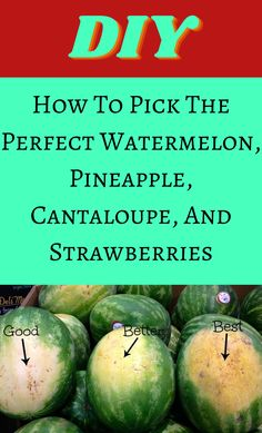Fruit Picking, Picking Watermelon, Simple Life Hacks, Useful Life Hacks, Ripe Fruit, Fresh Fruit, Things To Know, Good Things, Master Chef