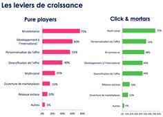 Leviers de croissance pour pure players et click and mortars
