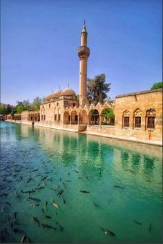 Turkish Architecture, Mosque Architecture, Mosques, Taj Mahal, Adventure, Mansions, History, Country, House Styles