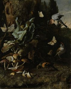 Animals and Plants, 1668, Melchior d' Hondecoeter