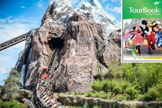 Expedition Everest roller coaster at Disney's Animal Kingdom Theme Park. This attraction & more can be seen in the 2013 Central Florida AAA TourBook® guide! Pick up your copy today at your local AAA club location.