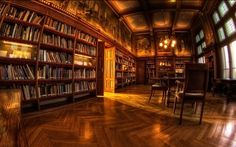 Biltmore House Library Top 10 Most Beautiful Places to Read Books Library Room, Dream Library, Library Ideas, Library Pictures, Future Library, Library Art, Future Office, Library Design, Somerset