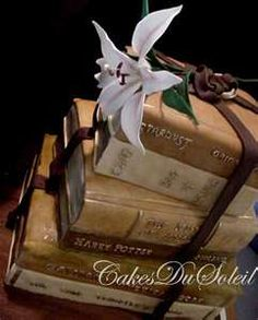 I want a cake that looks like books! If you could incorporate a dog, it would be everything I love in the world.