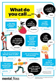What Do You Call These 12 Things? | Mental Floss