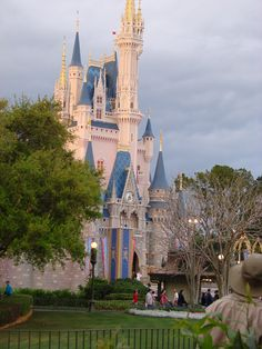 Disney World castle- taken a picture in this very spot.