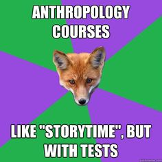 #anthropology