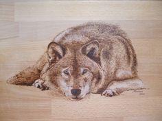 Pyrography of a wolf resting. Manon Massari. https://www.facebook.com/OfMiArt
