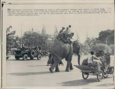 1973 Work Elephant Carries People Phnom Penh Near Military Vehicle